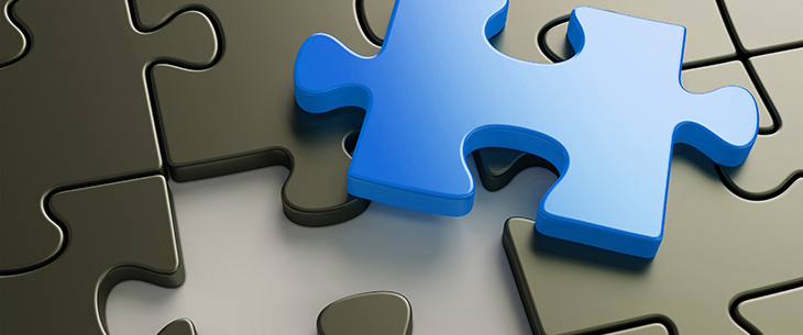The OMS Integration Puzzle